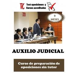 AUXILIO JUDICIAL. CURSO DE...